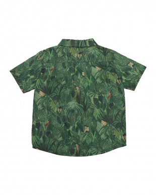 グリーン Jungle Tapestryシャツ見る