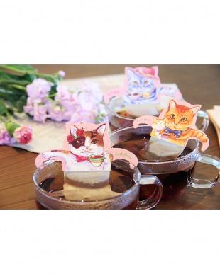 Cat Cafe キャットカフェ(アールグレイ) 3個セット見る