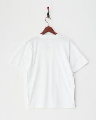 ホワイト ATV-501 ガーメントダイ裾ラウンドTシャツ見る