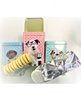 Studio Pets(チャーリー)ティーパックビスケットセット缶見る