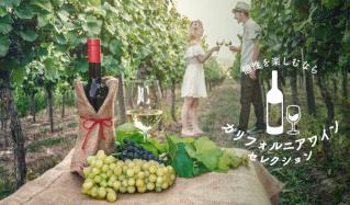 個性を楽しむなら カリフォルニアワインセレクションのセールをチェック