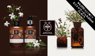 APIVITA(アピヴィータ)のセールをチェック