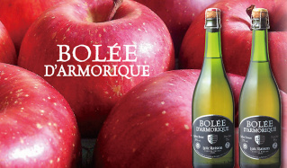 ブルターニュ産シードル  -BOLEE DARMORIQUE-のセールをチェック