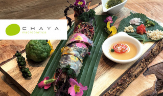HEALTHY & BEAUTY CHAYA MACROBIOTICSのセールをチェック