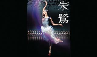 舞劇「朱鷺」-toki-のセールをチェック