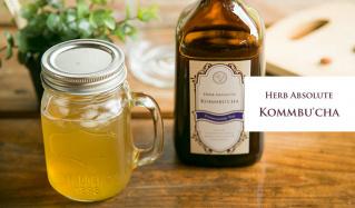 菌活飲料でもっときれい -HERB ABSOLUTE KOMMBU'CHA-(ハーブアブソリュート)のセールをチェック