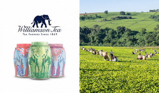 英国老舗高級紅茶ブランド -WILLIAMSON TEA-(ウィリアムソンティー)のセールをチェック