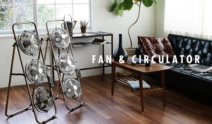 FAN & CIRCULATOR