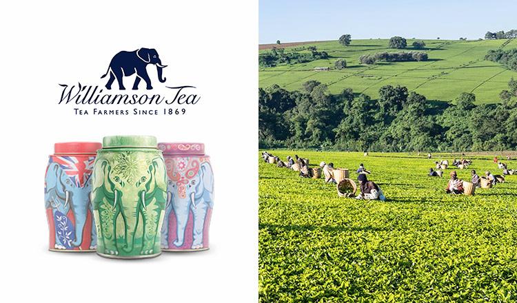 英国老舗高級紅茶ブランド -WILLIAMSON TEA-