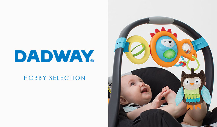 DADWAY HOBBY SELECTION(DADWAY)