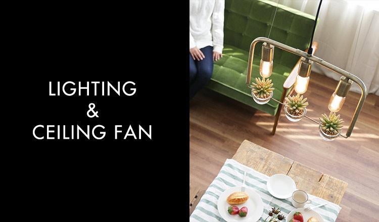 LIGHTING & CEILING FAN(LIGHTING & CEILING FAN)