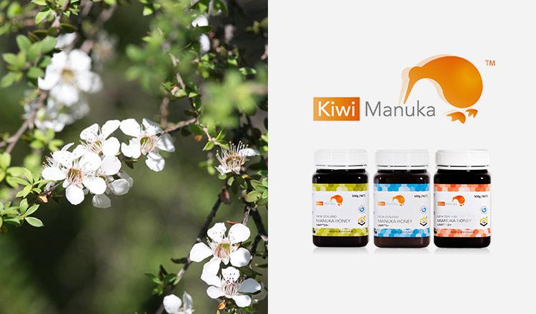 ニュージーランドの高品質マヌカハニー -Kiwi MANUKA HONEY-