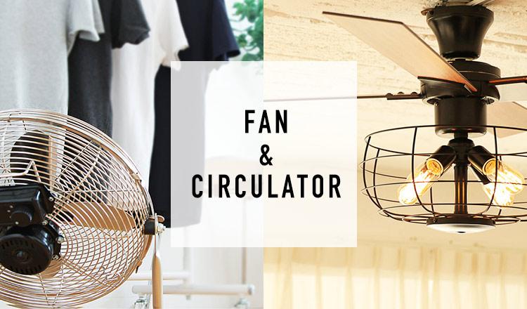 LIGHTING/CEILING FAN & FAN/CIRCULATOR(LIGHTING/CEILING FAN & FAN/CIRCULATOR)
