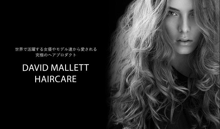 DAVID MALLET- 世界で活躍する女優やモデル達から愛される究極のヘアプロダクト-